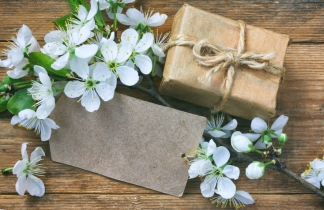gift box, empty paper tag and a branch of blossoming plum